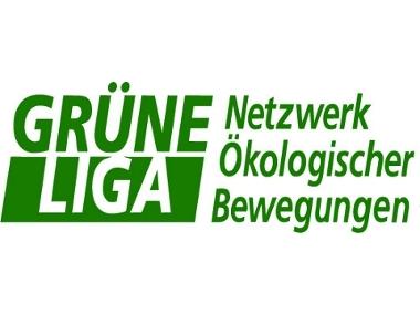 Grune Liga
