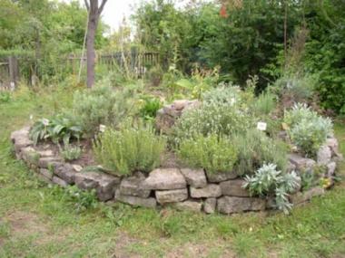 14.06.15, 11:00 - 16:00 Uhr - Ökolaubentag: Insektenfreundlicher Garten